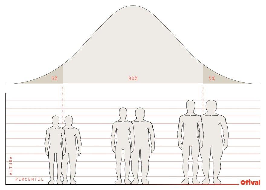 Campana Gauss dimensiones