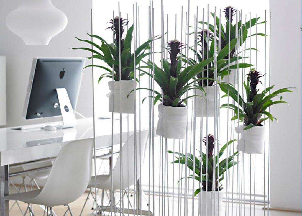 Macetas con plantas en el despacho