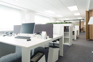 administracion-showroom-ofival