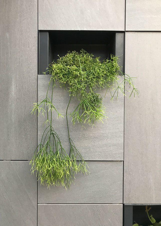 Jardín Vertical Autis Ingeniería
