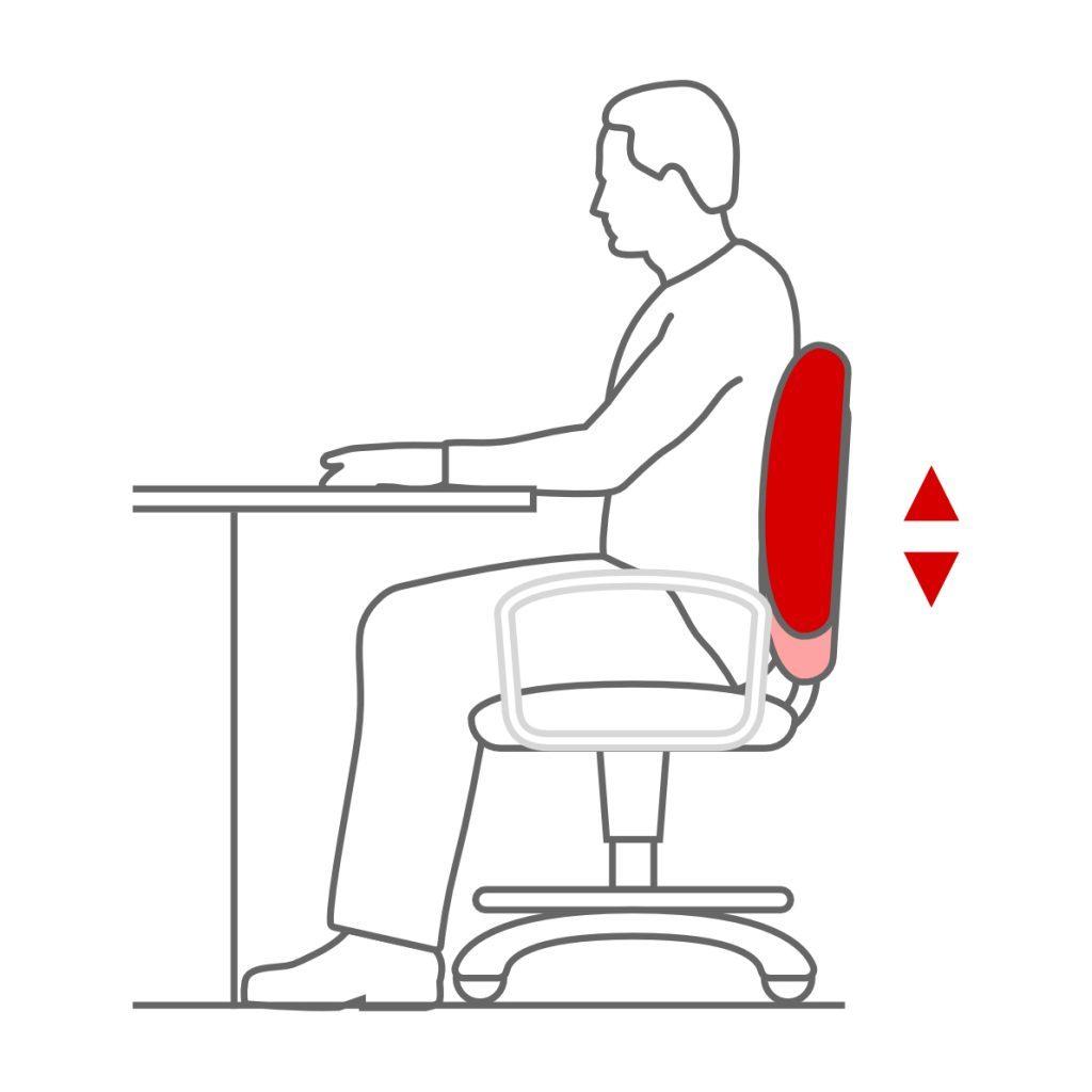 Soporte lumbar adaptable a la espalda