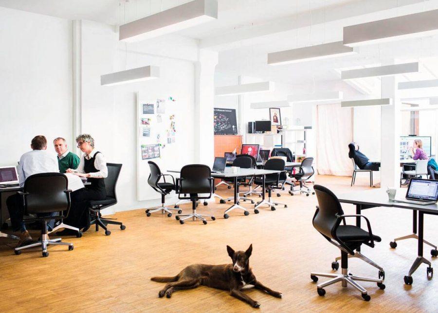 Silla FS 211/8 confidente de oficina
