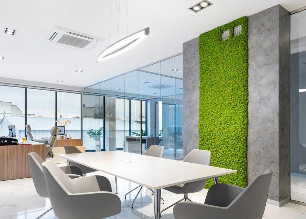 Las plantas en la oficina aumentan la productividad