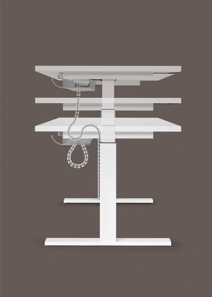 Mesa Sit&Stand Regulación en Altura